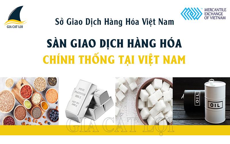 Sàn giao dịch hàng hóa phái sinh ở Việt Nam